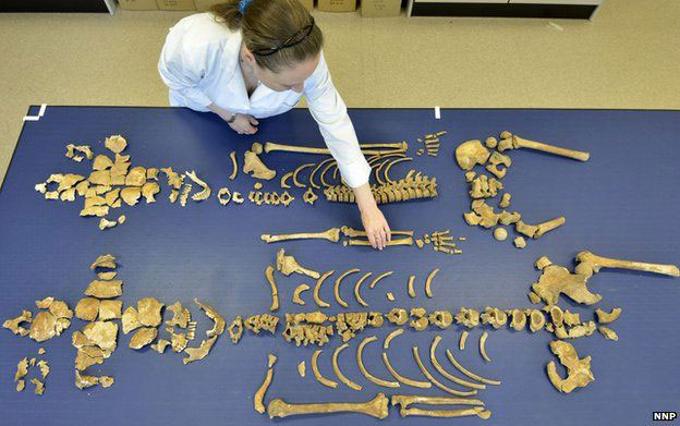 Dr Anwen Caffell of Durham University pieces together bones from the skeletons that had lain untouched for more than 350 years. Photo Credit: Richard Rayner/NNP/Durham Univer/PA.