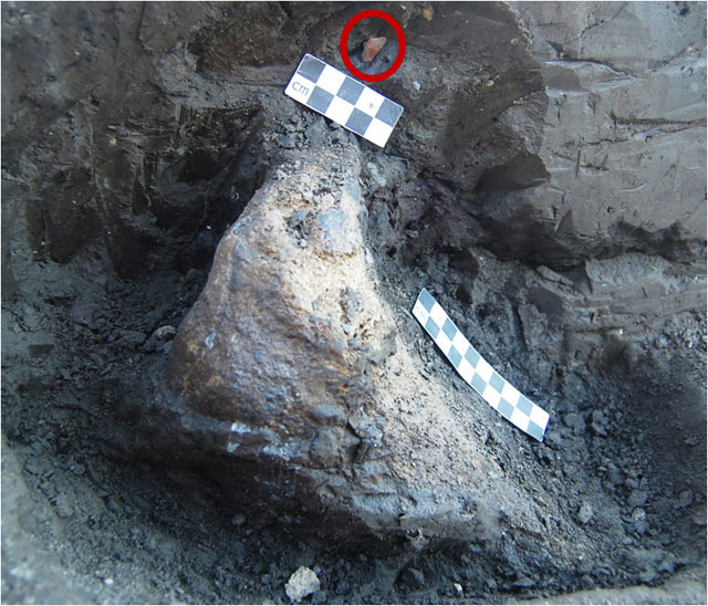 Marathousa1: Elephant bone in stratification in correlation with stone tools (circled) (photo: Ministry of Culture, Education and Religious Affairs).