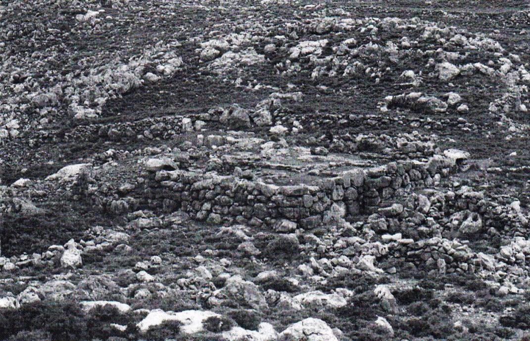 Fig. 1. Zakros, Karoumes: a Minoan rural guardhouse.