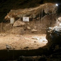 The environment of the Cantabrian Region in the course of 35,000 years is reconstructed