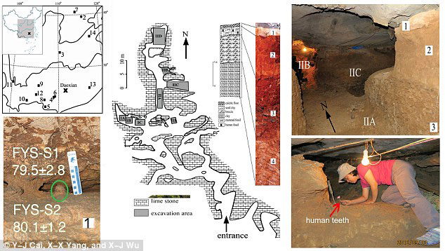 Geographical location and interior views of the Fuyan Cave, Doaxian with dating sample (lower left), plan view of the excavation area with surface layer marked (center), the excavated regions and researcher finding human tooth are shown right. Photo Credit: Daily Mail.