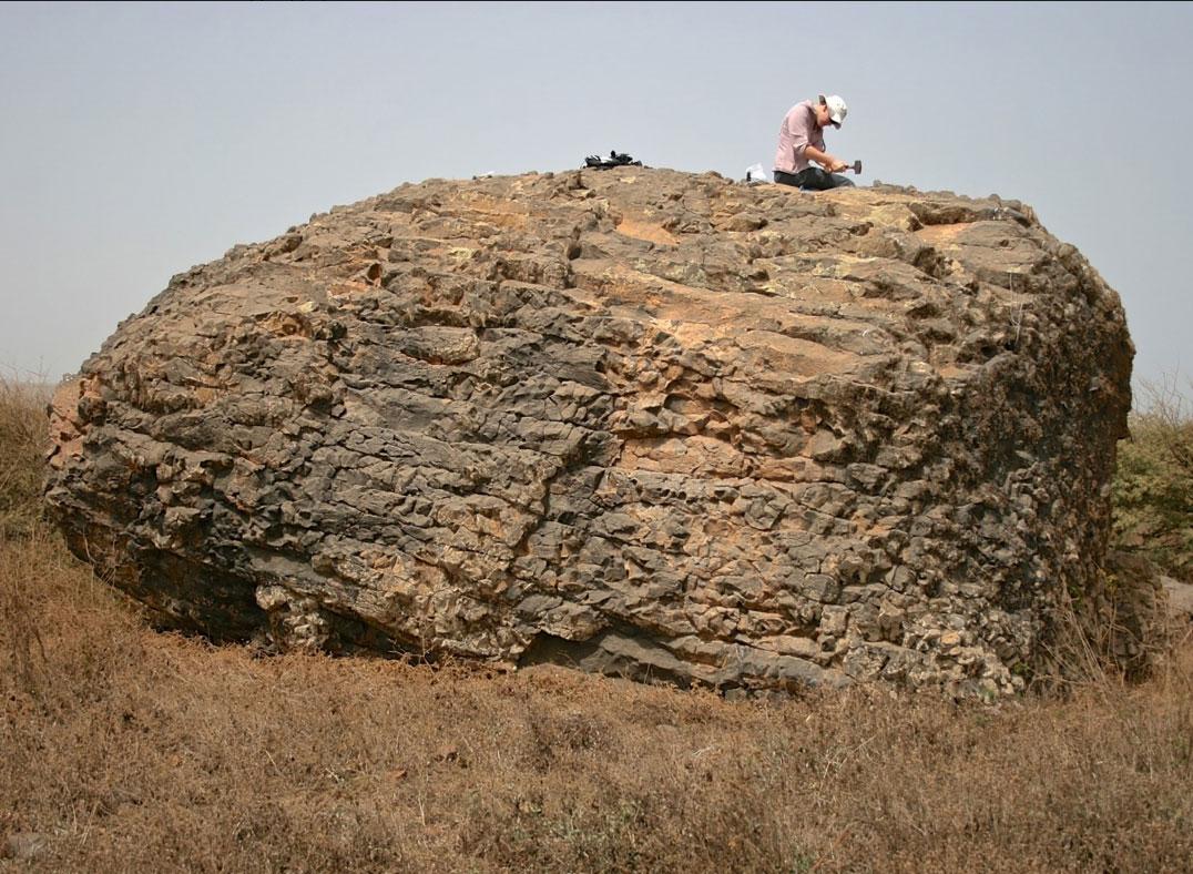 One of the boulders moved by the mega-tsunami. Credit: Ricardo Ramalho.