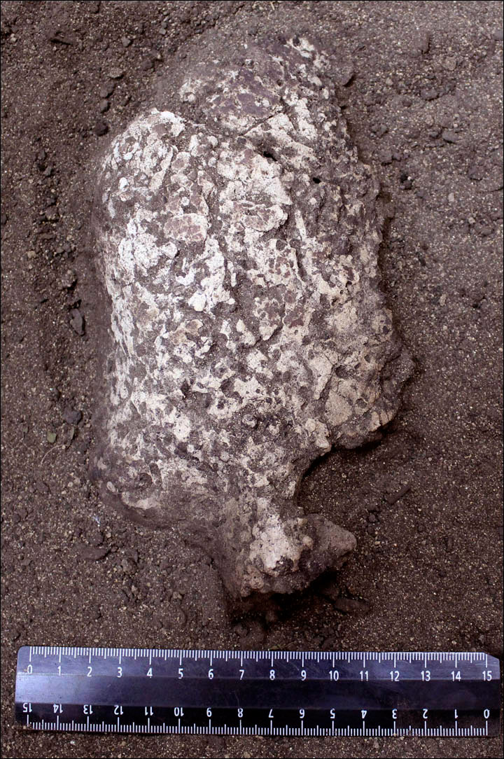 The wet soil in the are does not promote preesrvation of gypsum masks, Photo Credit: Pavel German.