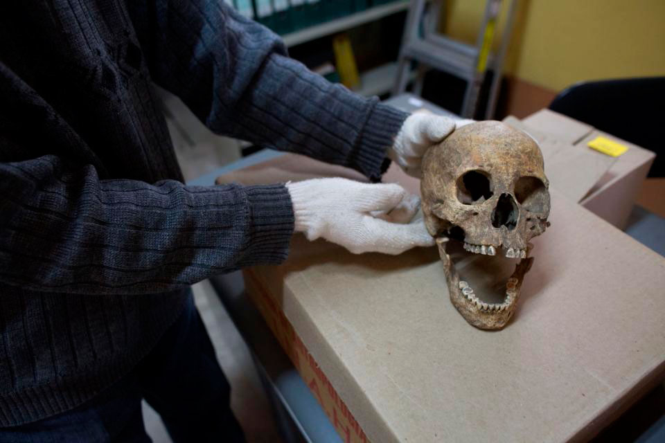 A worker displays the skull of a Spanish woman at the Zultepec-Tecoaque  archaeological site in Tlaxcala state, Mexico, Thursday, Oct. 8, 2015. According  to government archaeologists, this woman was sacrificed in the town plaza,  dismembered, and then had the skull of a 1-year-old child, who apparently  was sacrificed as well, placed in her pelvis, for reasons that were  probably symbolic and remain unclear. Photo Credit: AP/Rebecca Blackwell.