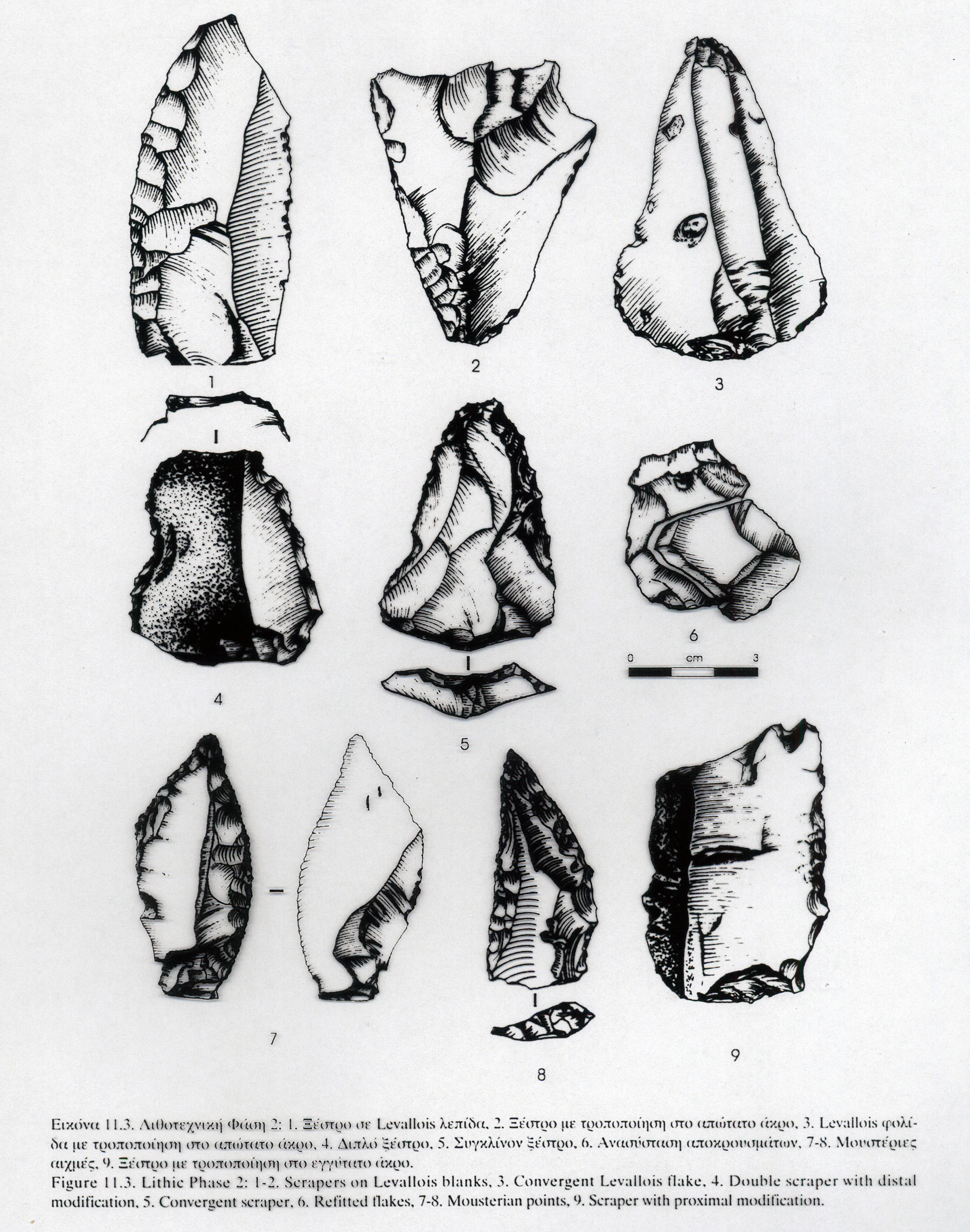 Tools used in radiocarbon dating 7