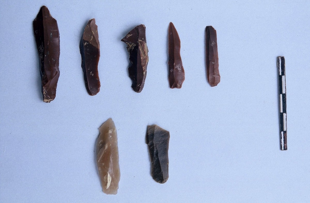 Fig. 12. Blade shaped tools of flint from the Upper Palaeolithic.