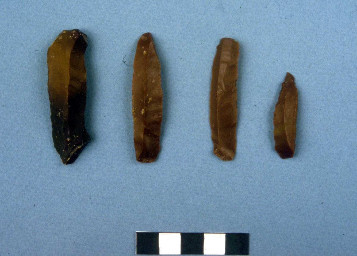 Fig. 32. Chocolate coloured flint blades.