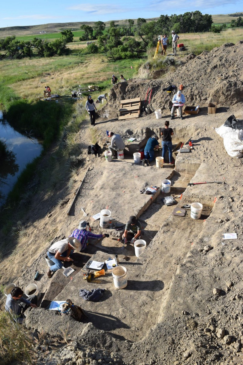 Participants in the University of Wyoming's Archaeological Field School work at the site of a mammoth kill near LaPrele Creek in Converse County, Wyo., during the past summer. A new study by UW researchers supports the hypothesis that hunting by humans led to the extinction of mammoths and other large mammals in the Americas between 12,600 and 15,000 years ago. Credit: University of Wyoming.