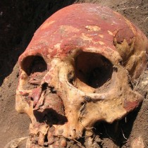 Plague in humans 'twice as old' but didn't begin as flea-borne