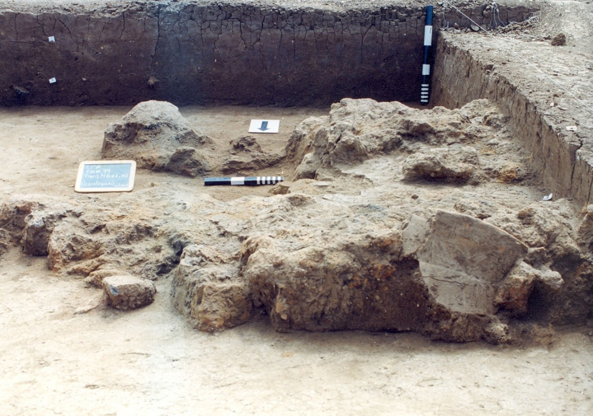 Fig. 8. Burnt architectural remains deposited inside a small pit (αα 424), on the North Eastern limits of the Neolithic settlement of Toumba Kremastis Koiladas.