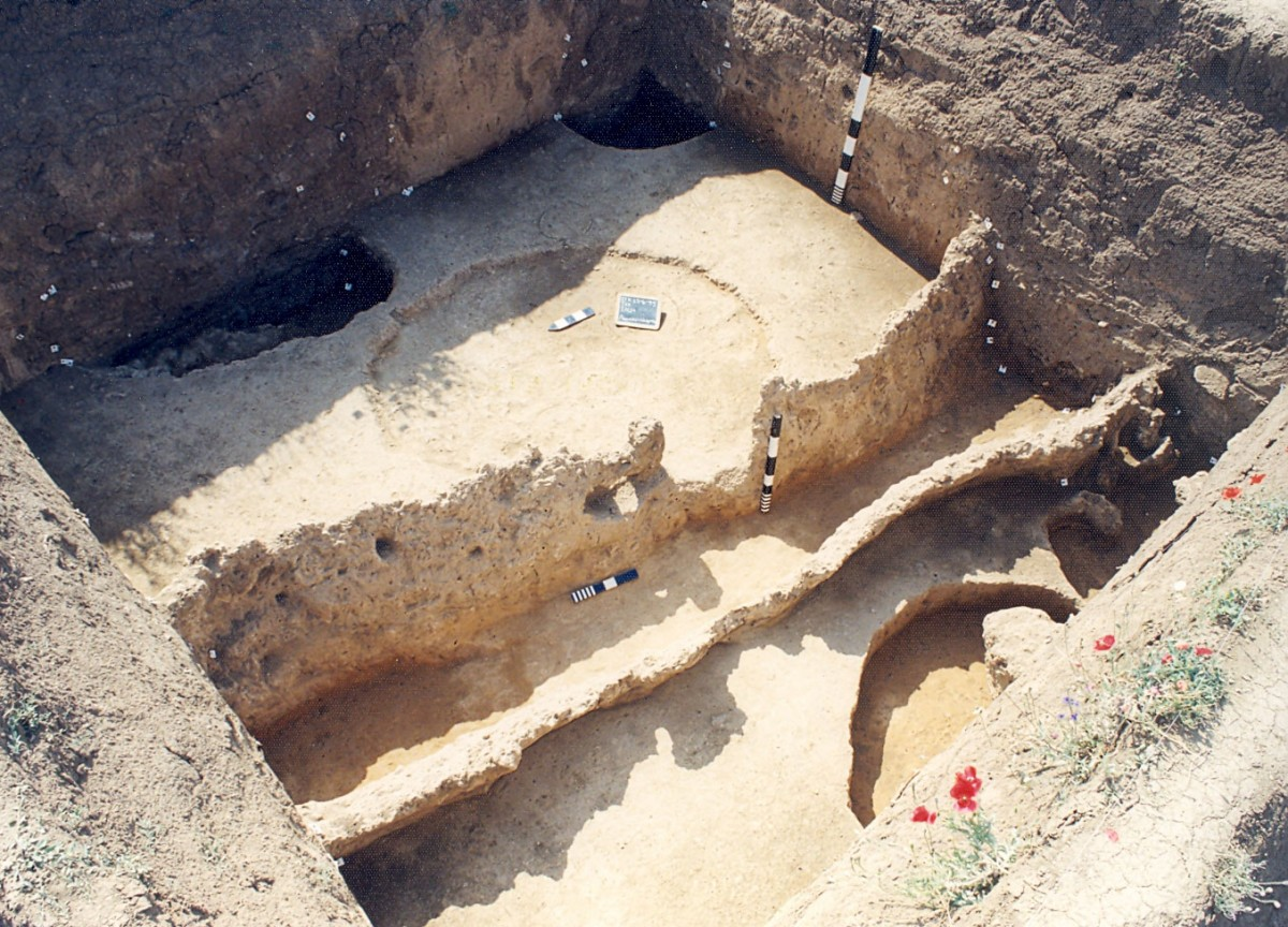 Fig. 3. Toumba Kremastis Koiladas. View of the 1998 excavation.