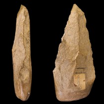 Biologists trace how human innovation impacts tool evolution