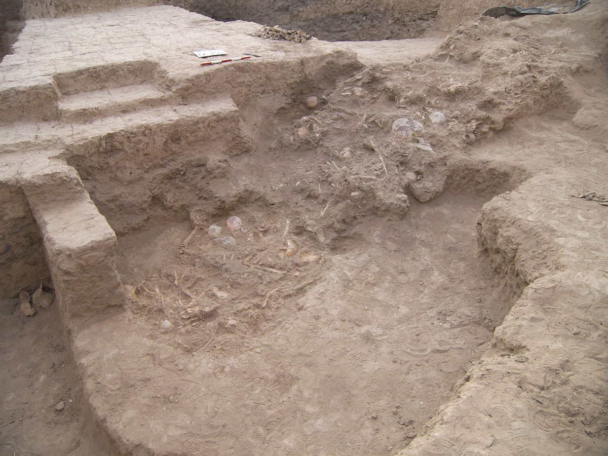 Mass grave on the ancient Elamite Haft Tappeh site. Credit: Behzad Mofidi-Nasrabadi