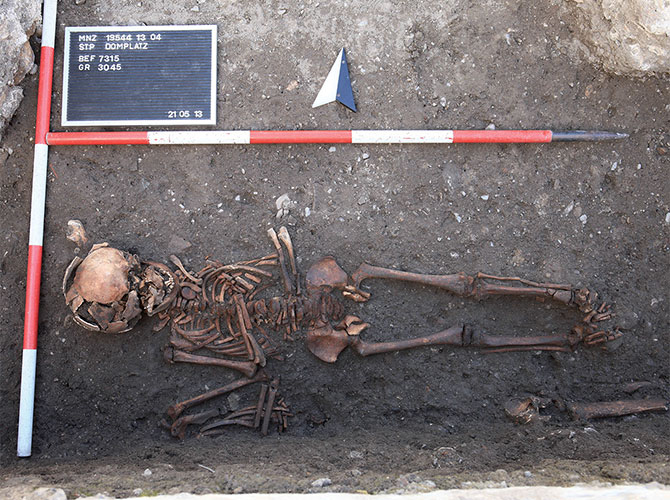 Skeleton from the excavations at the cathedral square of St. Pölten, Austria.
