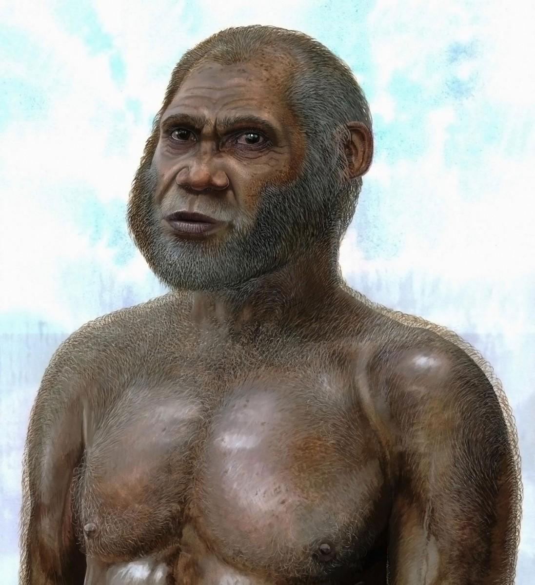 Artistic reconstruction of a Red Deer Cave man. Credit: Peter Schouten