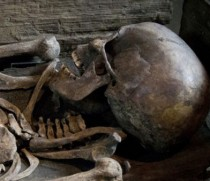 Extremely rare Viking skeleton and coffin go on display