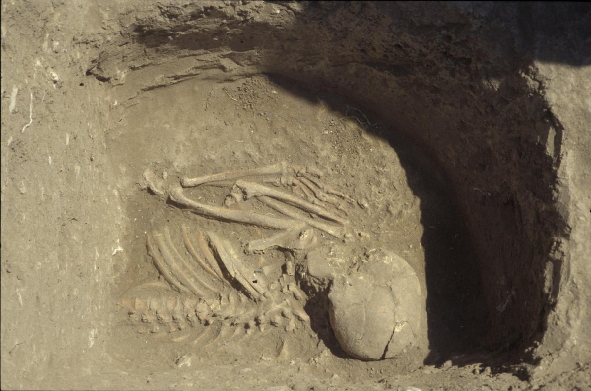 A large part of results come from grave 6 in Kumtepe, excavated in 1994. Here the upper part of a skeleton. Photo provided by Project Troia, thanks to Peter Jablonka. Credit: Photo provided by Project Troia, thanks to Peter Jablonka.
