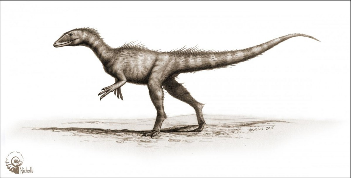 This is an artist's impression of Dracoraptor hanigani. Credit: Bob Nicholls