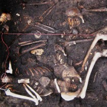 Plague may have persisted in Europe for 300 years