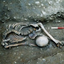 Piecing together the gruesome story of York's headless Romans