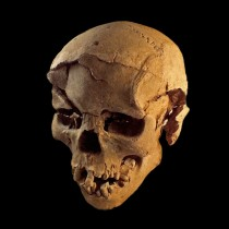 Evidence of a prehistoric massacre found in Kenya