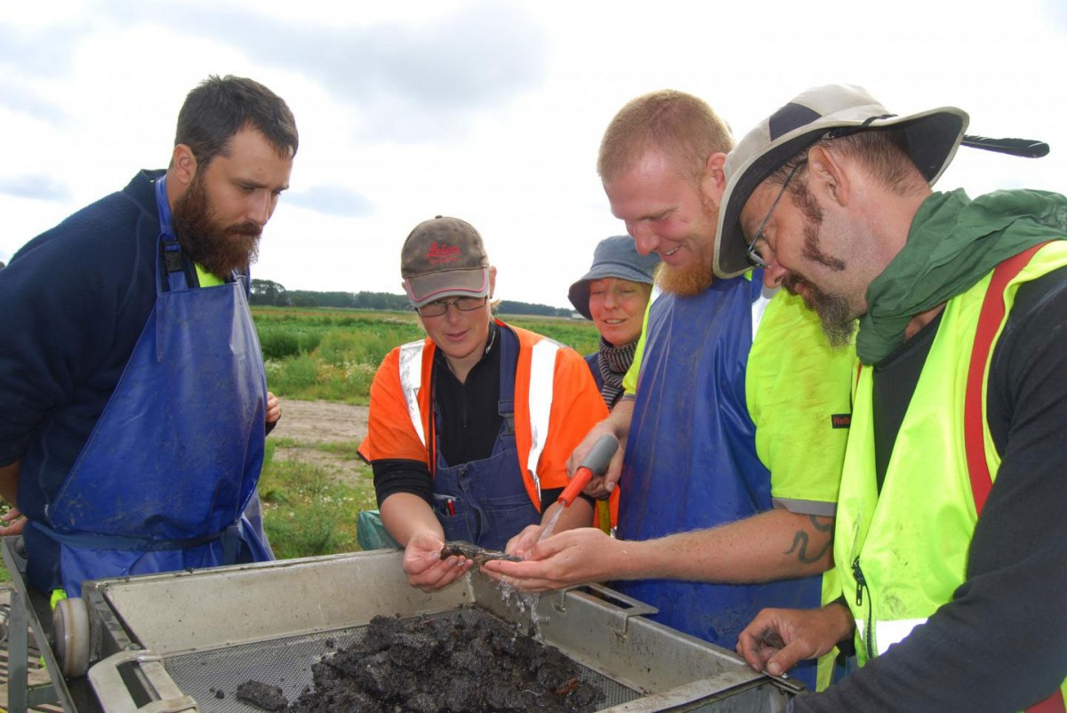 Adam Boethius, doctoral student in Osteology at Lund University together with other archaeologists in Blekinge, Sweden. Credit: Lund University.