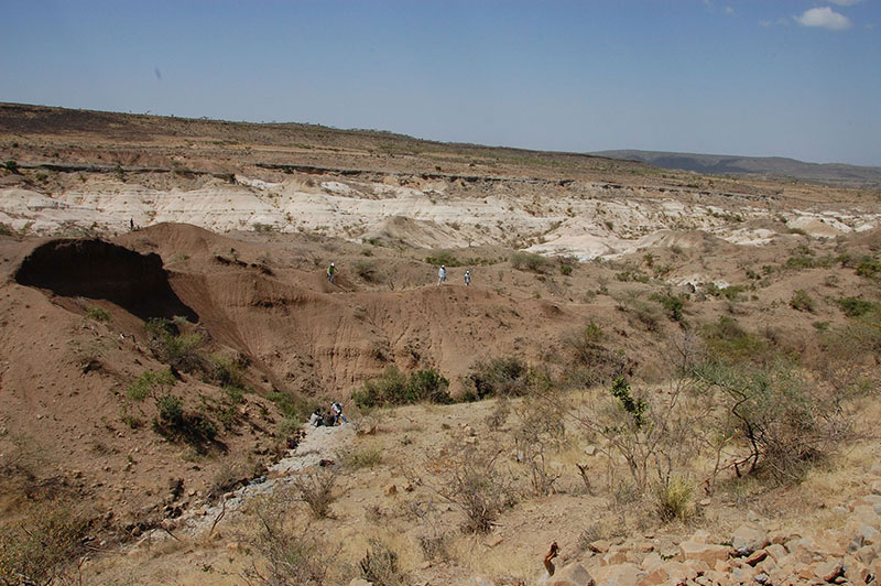 View of the Chorora sediments, looking north-northwest, where 8-million-year-old ape and other fossils were found. Photo: G. Suwa