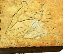 Middle Kingdom tomb discovered in Egypt