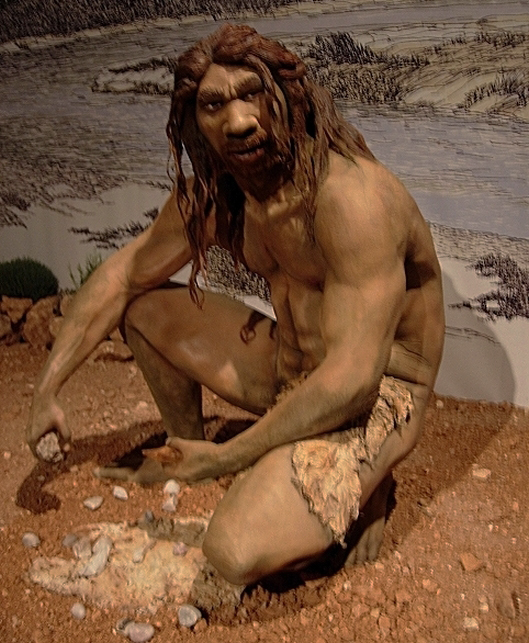 A reconstruction of Homo heidelbergensis.