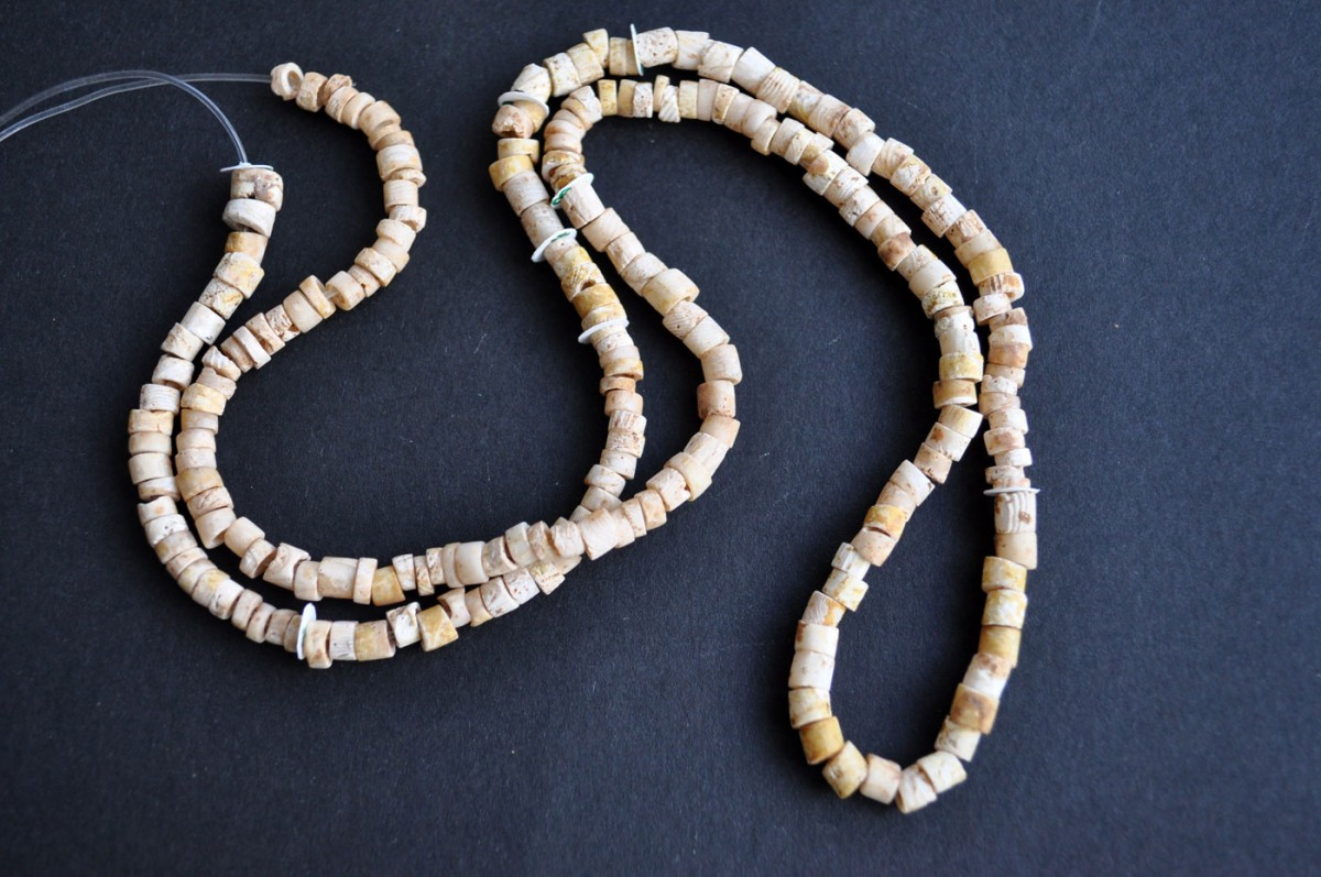 Fig. 5. Beads made of the spondylus shell from a necklace obviously worn by the dead woman, from cremation burial no 21.