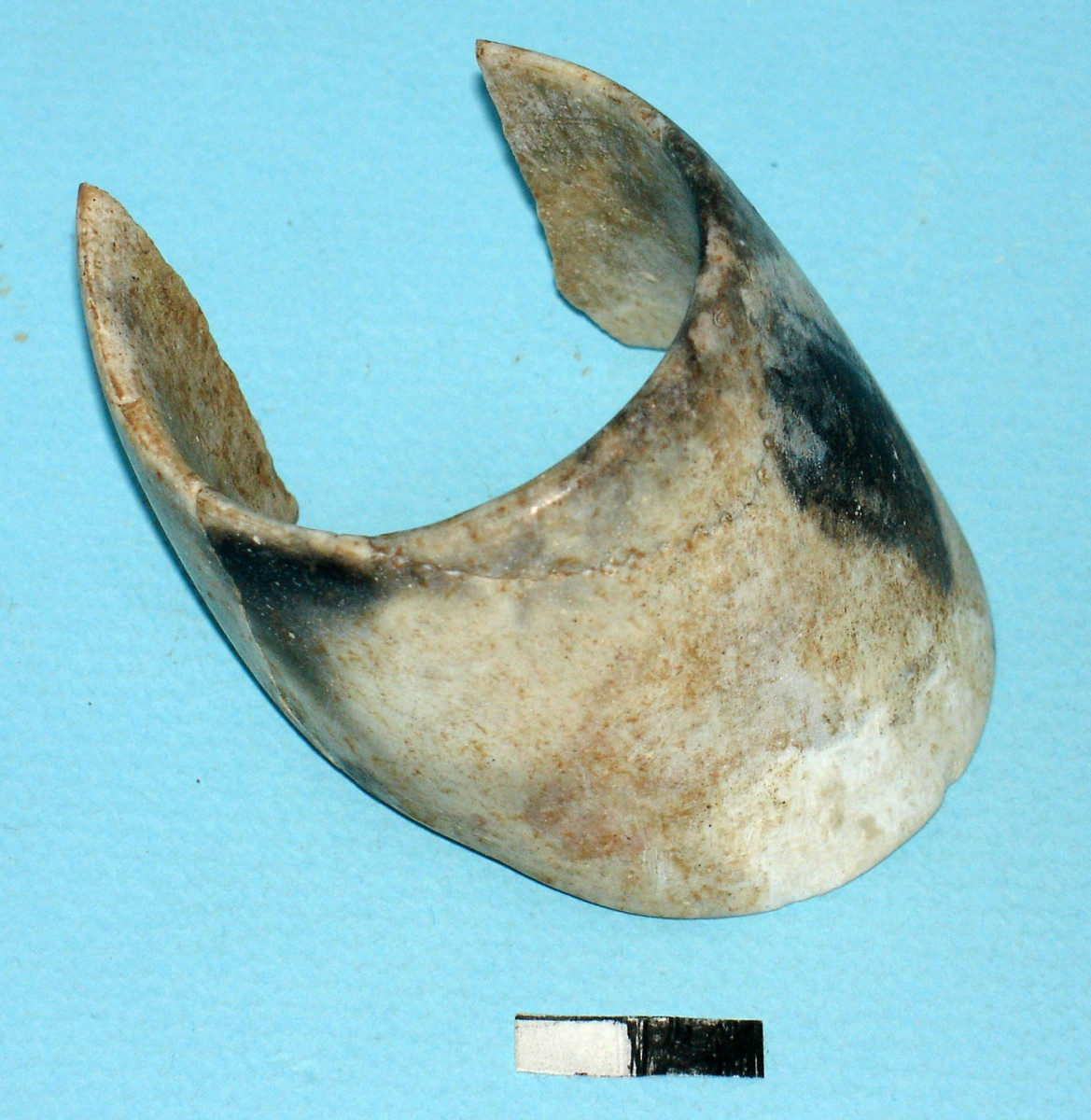 Fig. 6. Piece of stone jewellery (made of opal) from cremation burial no 22.