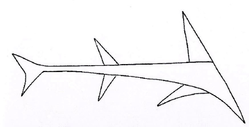 An illustration of the shark on the blade. Image Credit: Tottori prefectural government/The Ashahi Shimbun.