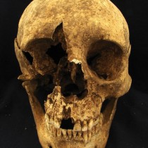 Clues about human migration to Imperial Rome