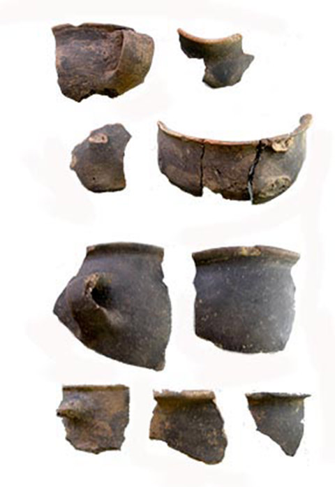 Fig. 12. Samples of the brown black version of monochrome ceramics from Dodoni. (source: author's archive)