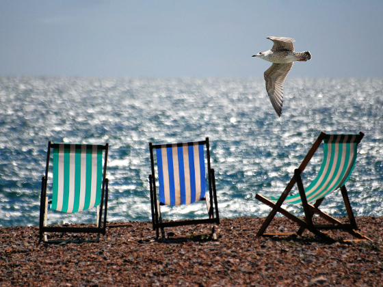 Deckchairs on beach. Photo: IOP