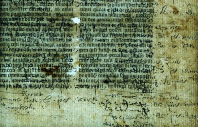 Hidden annotation are mixed with biblical text in a 1535 Latin Bible. CREDIT © Lambeth Palace Library.