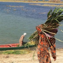 Ecological collapse circumscribes traditional women's work
