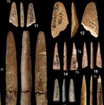 Palaeolithic Chinese bone tools analysed in study