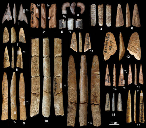 Bone artefacts recovered from the Ma'anshan site. Photo Credit: ZHANG Shuangquan.