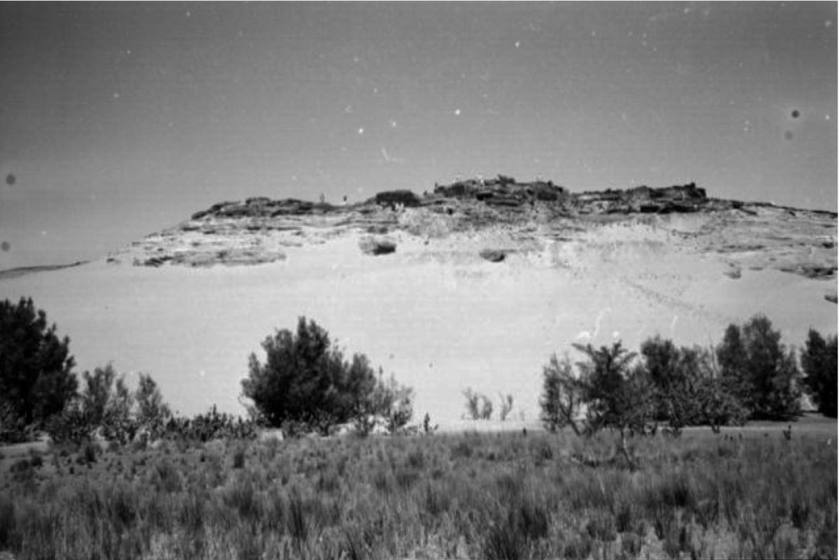 Fig. 6. Overview of the monastic site of Qasr el Wizz in Lower Nubia before the flooding of the area by the Aswan High Dam. Credit: Archives of The Oriental Institute of Chicago.