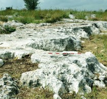 Neolithic quarry proves human impact on landscape