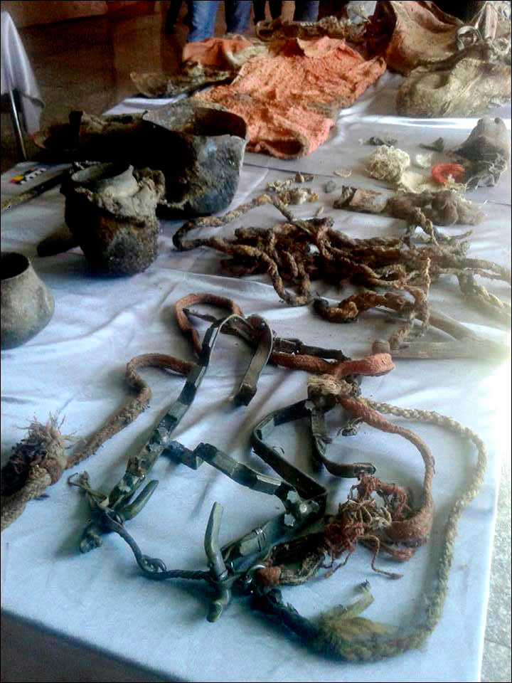 A harness was among the artefacts found in the grave. Photo Credit: Khvod Museum/Siberian Times.