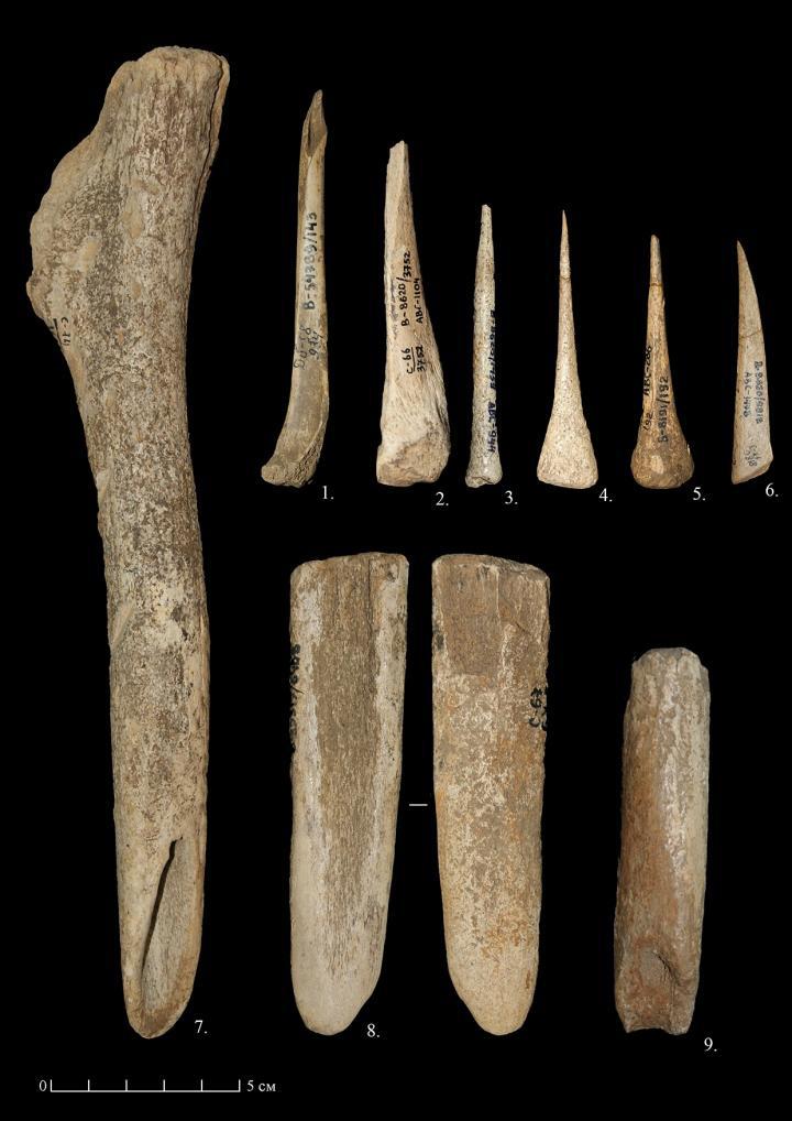 Bone industry of the Sungir site: 1-5. Credit: Taisiya Soldatova.