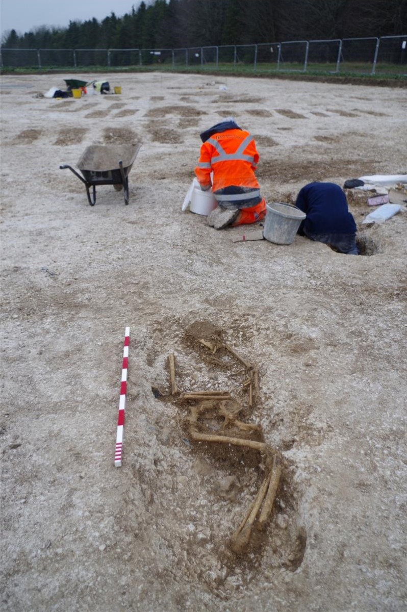 Excavations revealed an Anglo-Saxon cemetery of about 150 graves  [Credit: Wessex Archaeology].