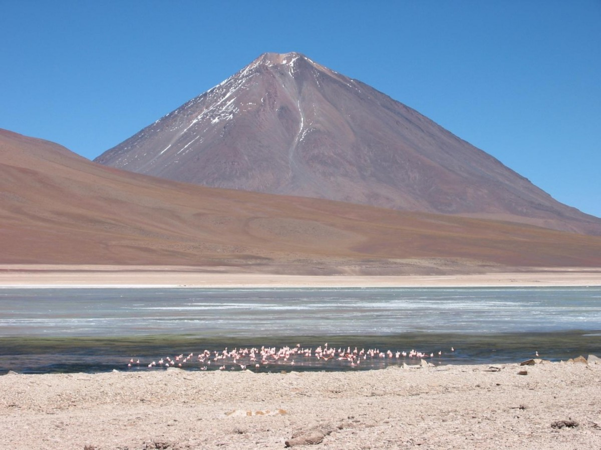 Volcano Licancabur, an active volcano in the Andean Continental volcanic arc on the Chile-Bolivia border, looms above flamingos in a nearby lake. Credit: Brian Horton.