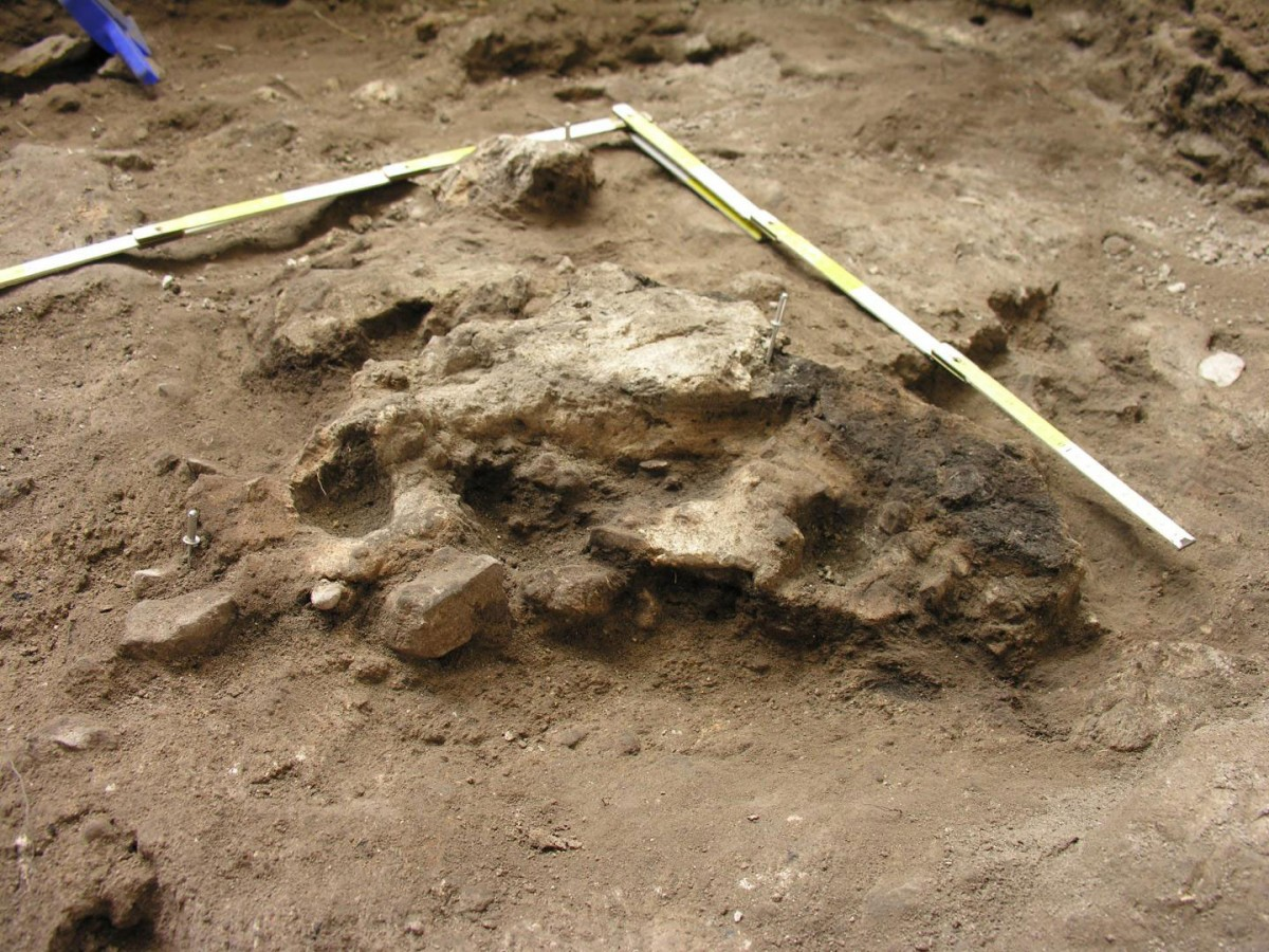 Pile of burnt debris of the Chalcolithic period unearthed at San Cristobal (Alava, Basque Country, Spain). Credit: UPV/EHU.