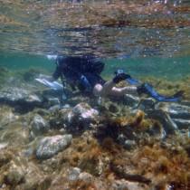 Seven shipwrecks located off Delos' shores