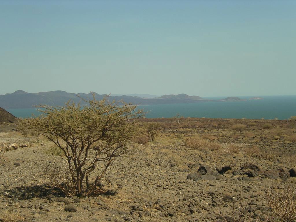 Lake Turkana.