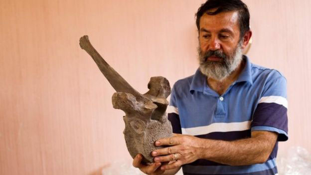 Mexican archaeologist Luis Cordoba said the vertebrae and other bones dated from the Pleistocene period (between 14,000 and 12,000 years ago). Photo Credit: AFP/BBC.