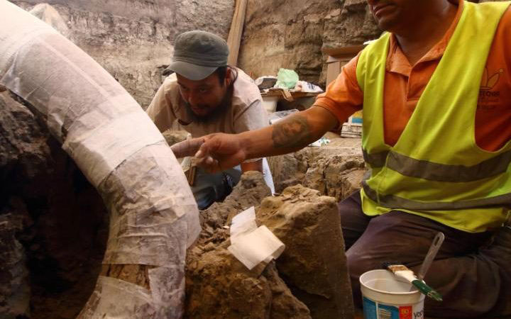 Mexican archaeologists Felipe Munoz (L) and Jose Antonio Corona work on excavating the animals huge tusks. Photo Credit: AFP/The Telegraph.